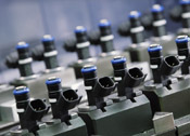 Bosch celebrates:
